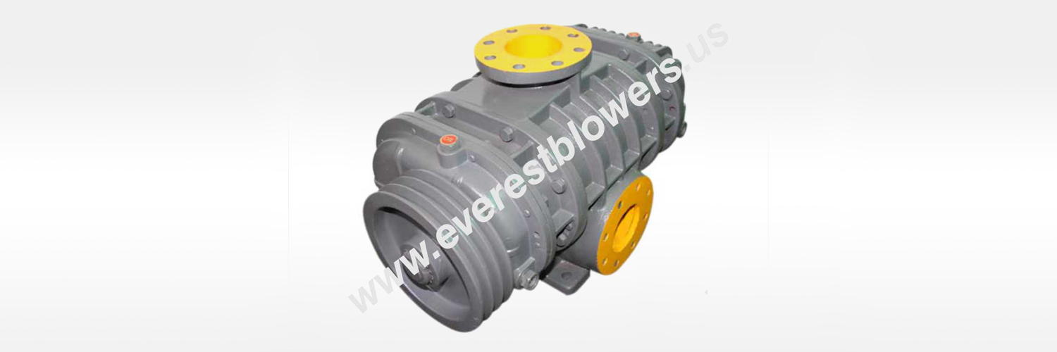 biogas blowers